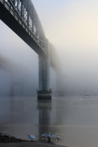The view of the Bridge from the Saltash foreshore. click to view larger.