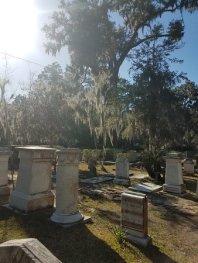 walk-through-graveyard